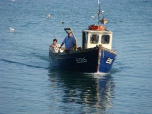Fishing Trips in Beer Kim Aplin